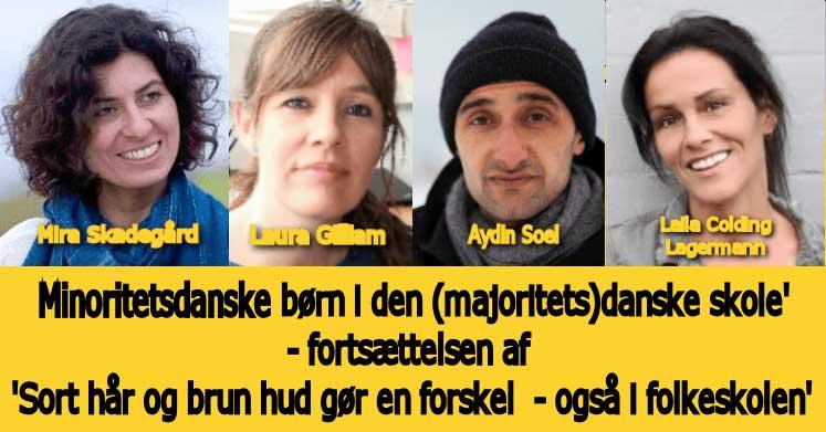 Minoritetsdanske børn i den (majoritets)danske skole